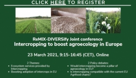ReMIX Final Conference: registrations are now open